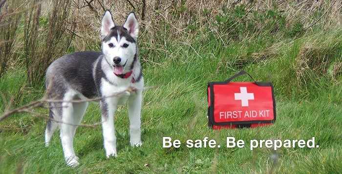 Husky First Aid Kit