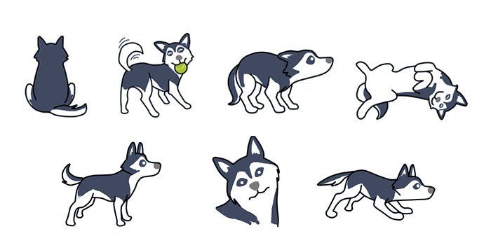 Understanding Husky Body Language