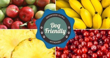 Dog Friendly Fruits