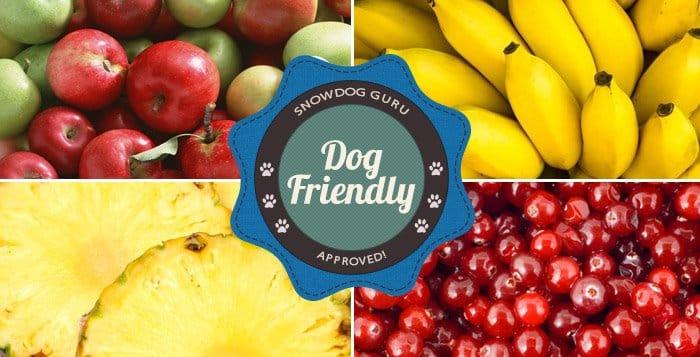 Dog Friendly Fruits