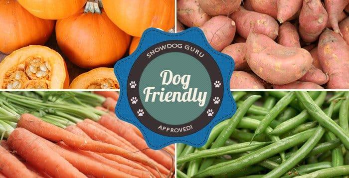 Dog Friendly Vegetables